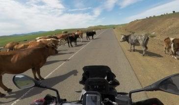 romania-motorcycle-tour-bmw-motorcycles